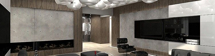 nowoczesne wnętrze rezydencji-salon