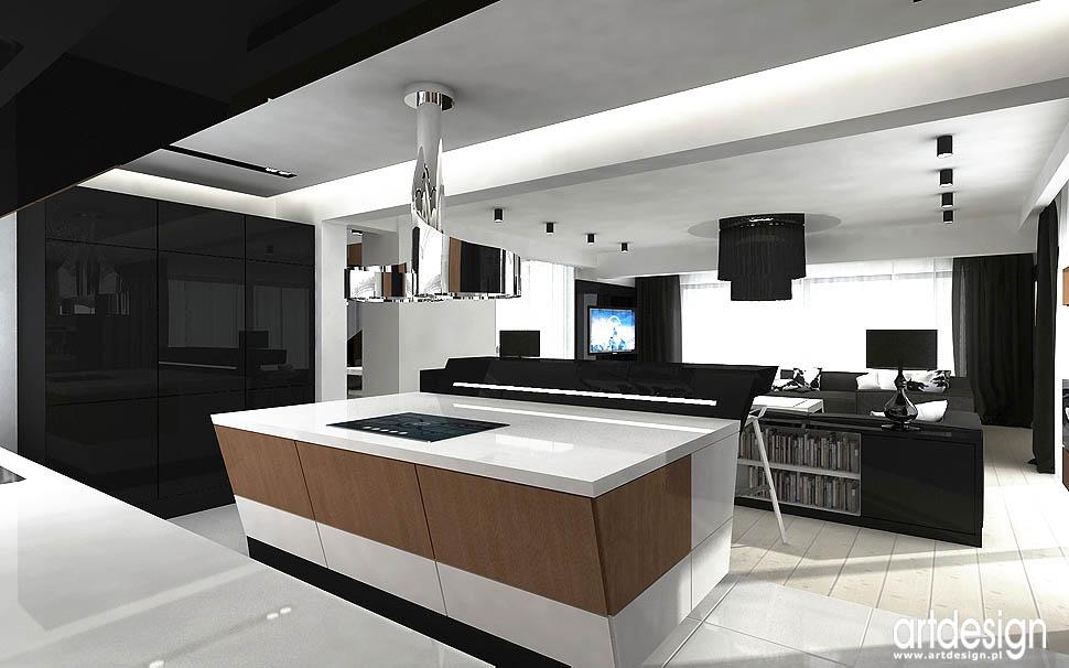 aranżacja wnętrza kuchnia design