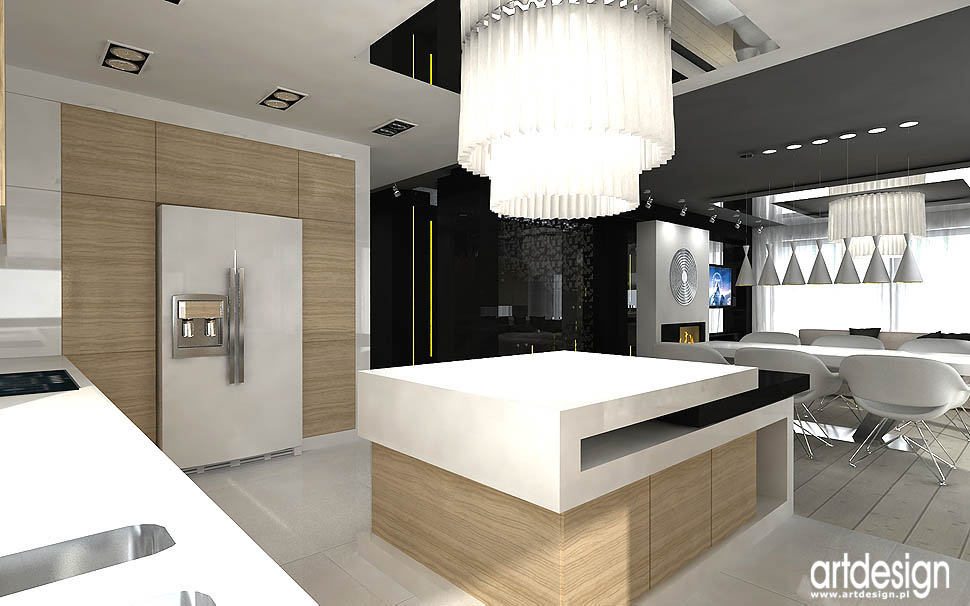 architektura wnetrz apartamentu nowoczesna kuchnia