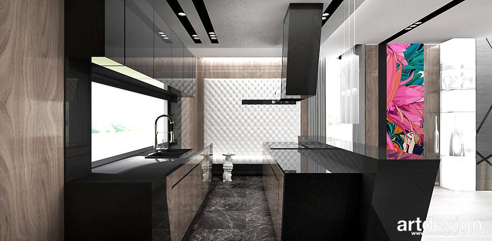 nowoczesne stylowe wnętrze kuchnia