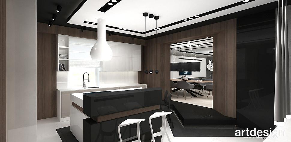 nowoczesna kuchnia dom projekt