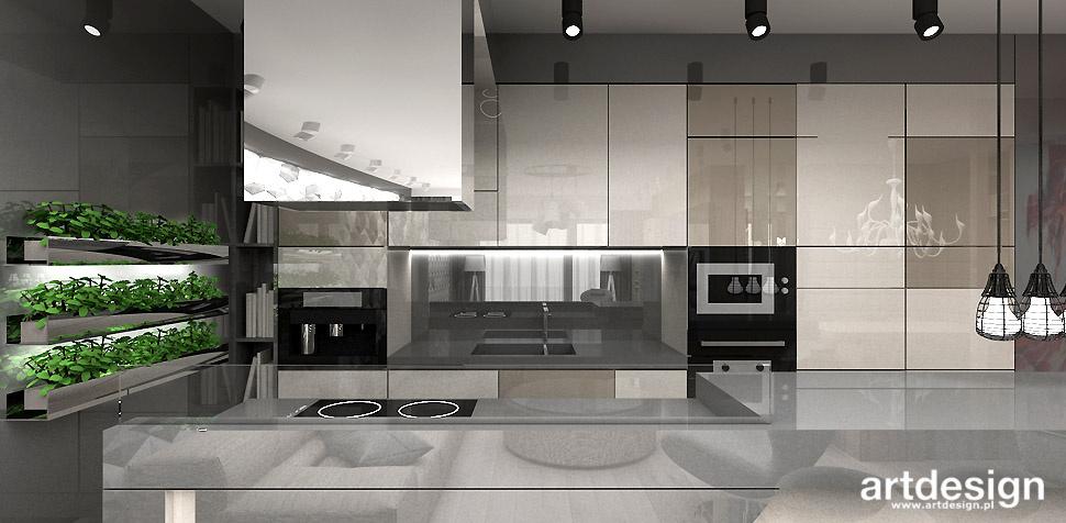 architektura wnętrz projektowanie kuchni