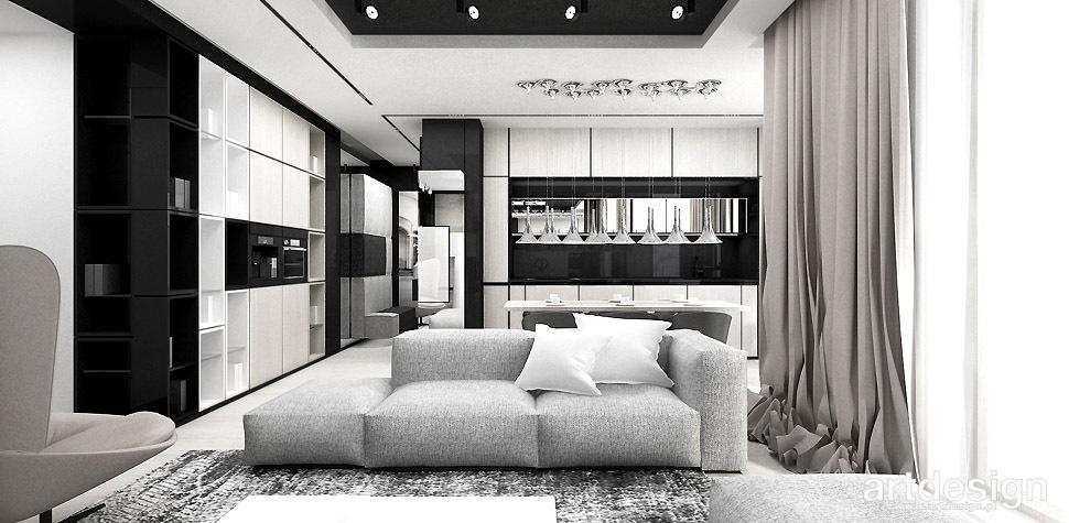 salon z kuchnia apartament