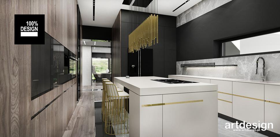 projektant wnętrz domu kuchnia