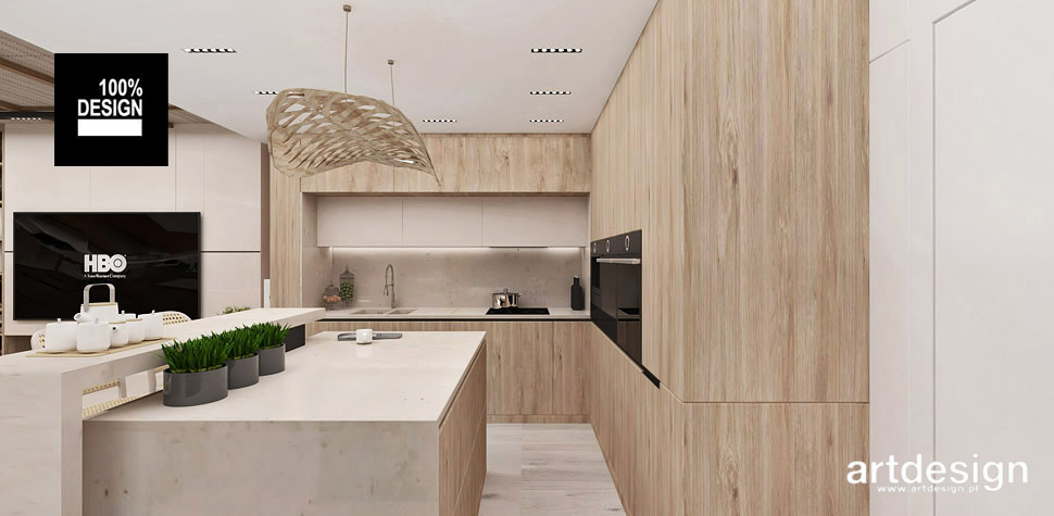 aranżacja kuchni wnętrze